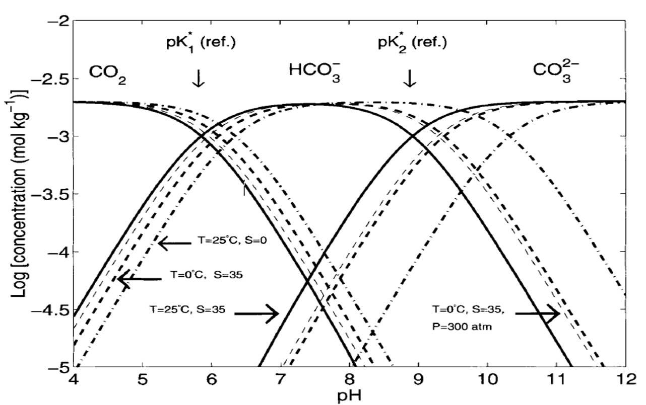 Sumber gas co2 di laut eko efendi unsur pokok bahan anorganik yang terdapat di perairan dan atmosfer memiliki asal usul yang sama co2 di atmosfer adalah asam yang ccuart Images